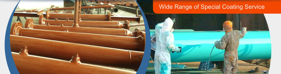 Wide range of special coating service